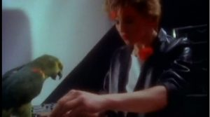 My Own Way Duran Duran Nick Rhodes and parakeet